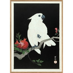 The Dybdahl - Plakat 50x70 cm. - Cockatoo & Pomegranate - Papir